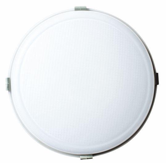 LED Außenleuchte REX-F 30W, IP65,